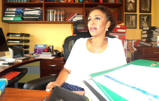 Mwanasheria wa kujitegemea nchini, Fatma Karume akizungumza ofisini kwake jijini Dar es Salaam jana. Picha: Mwananchi